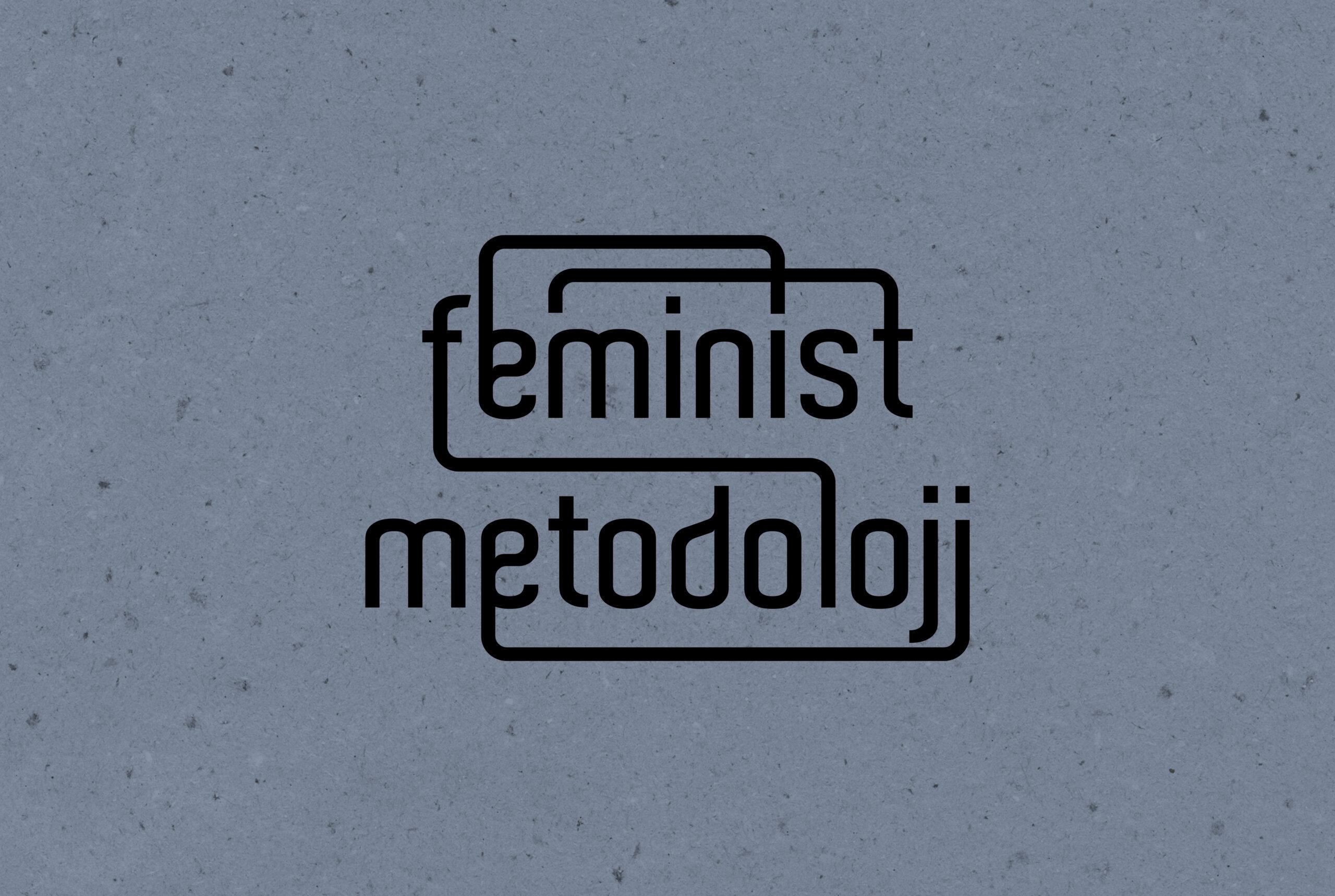 Feminist Metodoloji