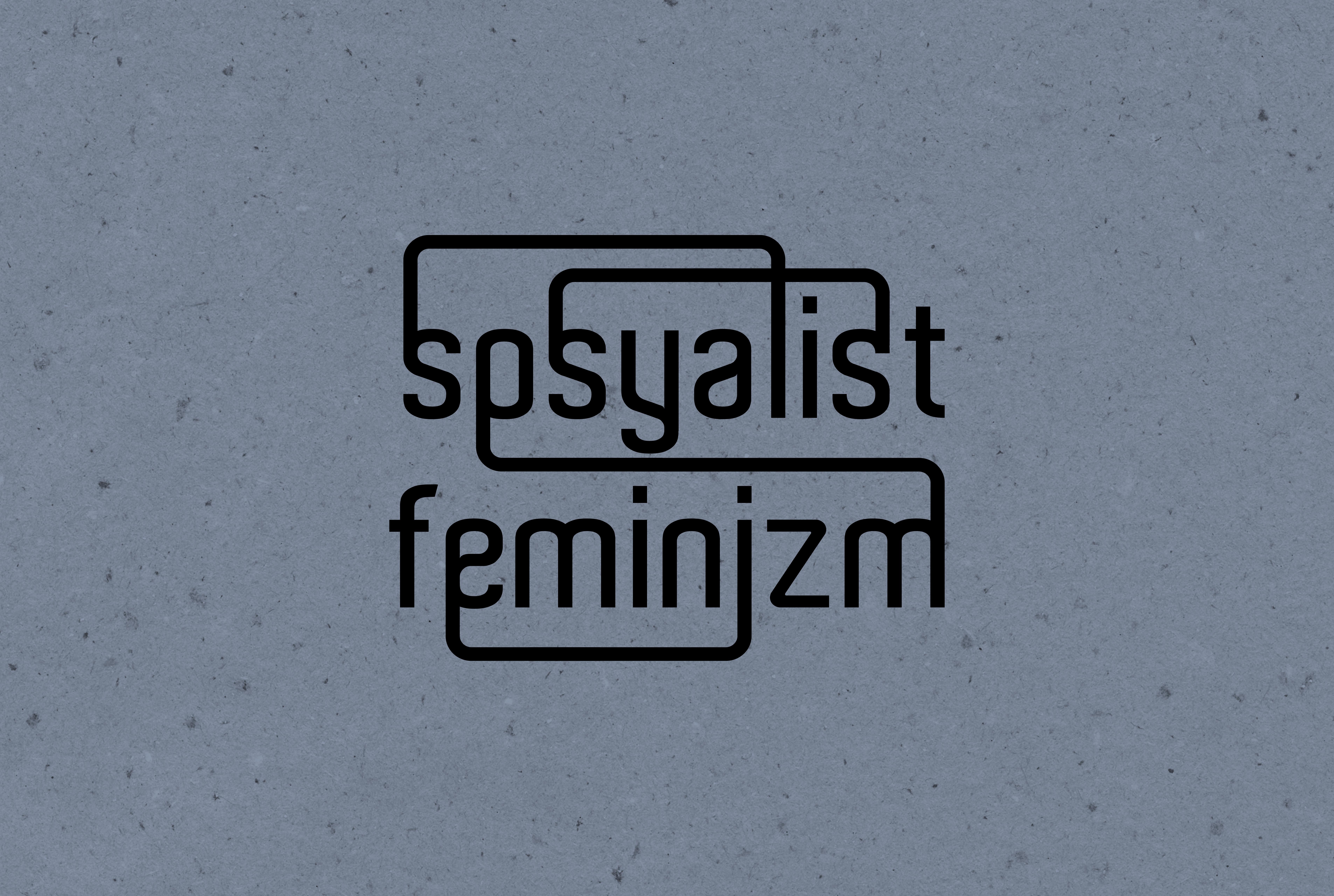 Sosyalist Feminizm